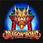 Dragon Bond